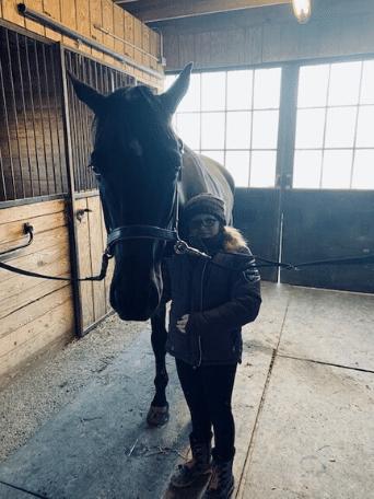ring buys horse for bat mitzvah girl
